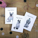Winter Cats And Dogs Assorted Christmas Card Pack