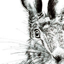 Hare Print 'The Runners Seven'