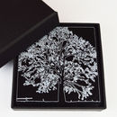 Tree Design Drinks Coasters, Acrylic, Set Of Four