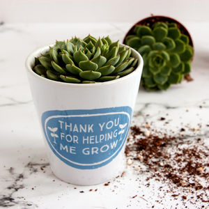 Personalised Teachers Gift Plant Pot - pots & planters