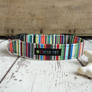 Joseph Striped Dog Collar - more