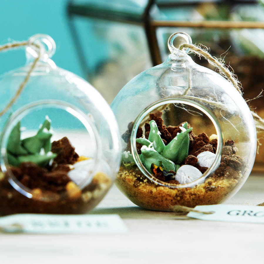Edible Mini Terrarium Cake By Kensington Lane Notonthehighstreet Com