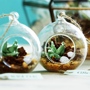 Edible Mini Terrarium Cake - edible favours