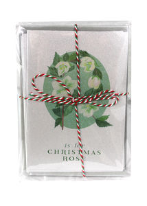 Silver Christmas Card Christmas Rose Pack Of Six - cards & wrap