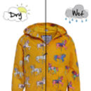 Colour Changing Carousel Horse Raincoat