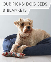 our picks: dog beds and blankets