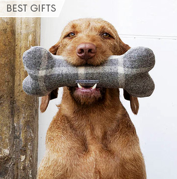 best gifts for pets