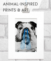 animal inspired prints and art