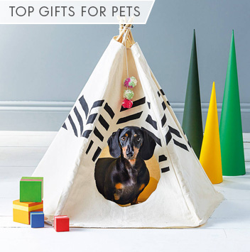 top gifts for pets