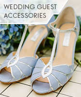 wedding guest accessories