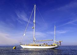The English Shipmate