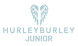 Hurleyburley junior logo