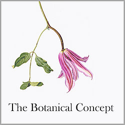 The Botanical Concept