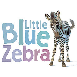 Little Blue Zebra