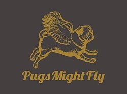 Pugs Might Fly