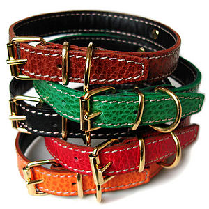 Poochie Amour Leather Dog Collar - walking