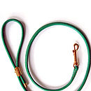 Green Leather Dog Lead