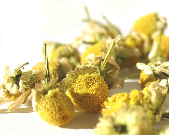 Camomile Infusion 50g