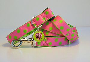 Lovebug Spotty Dog Collar + Matching Lead - more