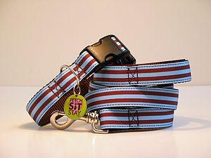 Willow Striped Dog Collar + Matching Lead - dog collars