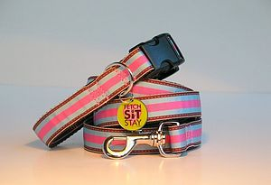 Circus Striped Dog Collar + Matching Lead - dog collars