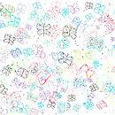 Butterfly Prints