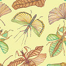 Insects: Card
