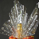 Chic Cellophane Gift Wrapping