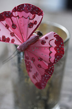 Butterflly Pink & white spots