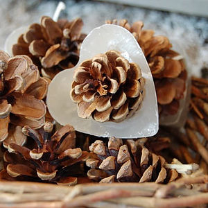 Heart Shaped Cinnamon Pine Cone Firelighters - winter warmers