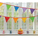 Multi-Coloured Bunting 5