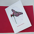 Butterfly Annual Seed Card
