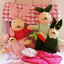 Rabbit play house