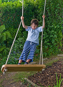 'Just A Bit of Fun' Swing - outdoor toys & games