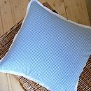 Blue Gingham Cushion