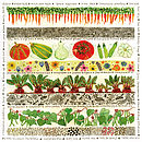 Vegetable Patch Card