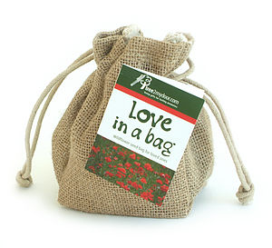 Love in a Bag Gift - wedding favours