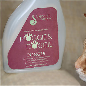 PONGO! deodorising spray - pet grooming & hygiene