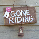 gone riding_brown wash with pink rosette