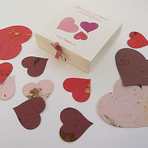 Plantable Scatter Hearts - confetti, petals & sparklers