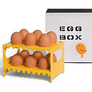 Stylish Metal Egg Box