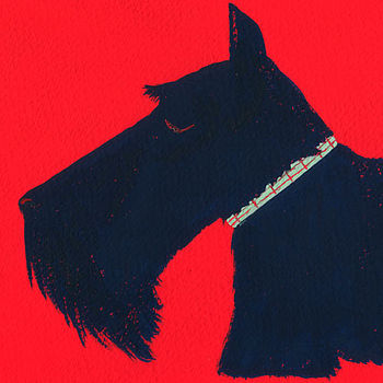 Monty the Scottish Terrier Fine Art Print