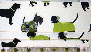 Mr Woofles Lime Roman Blind - children's decorative accessories