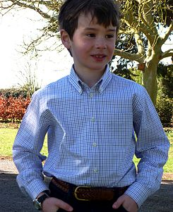 Boy's Blue and Navy Check Shirt - shirts & blouses