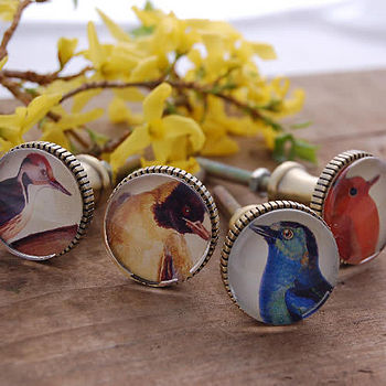 Set of 4 Brass Drawer/Cupboard Knobs with Birds