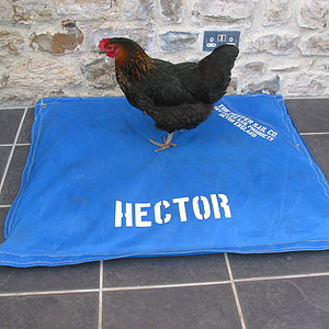 Personalised Recycled Sailcloth Pet Bed - beds & sleeping