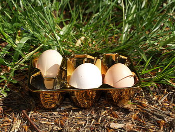 Gold Porcelain Egg Box