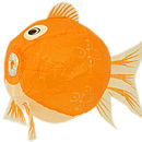 Orange fish cut out