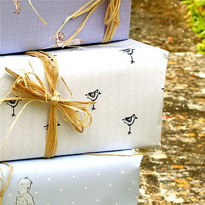 Robin Gift Wrap - wrapping paper
