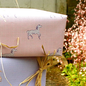 Nellie Gift Wrap - wrapping paper